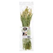 LandPartie Weizen Sträußchen 100g