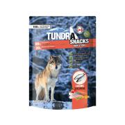 Tundra Hundesnack Skin und Coat Lachs 100g