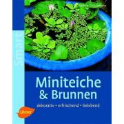 Miniteiche und Brunnen Ulmer Verlag