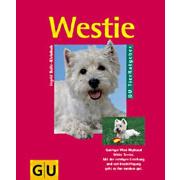 Westie: Quirliger West Highland White Terrier