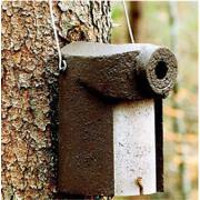 Schwegler Nisthöhle 3SV Ø 45 mm