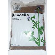 Phacelia Samen 500g